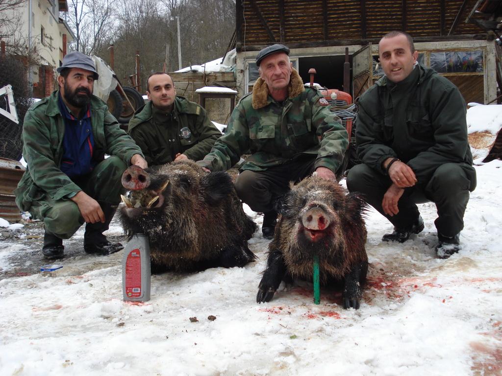 Odstrel u lovačkoj sekciji Gledić 22.12.2012.
