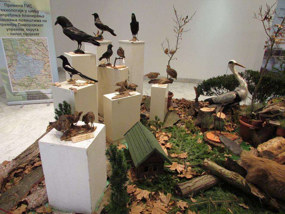 Izložba Šumarske škole i LU povodom 120 godina organizovanog lovstva u Kraljevu